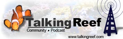 The Talkingreef Community